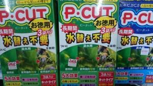 PCUT1227